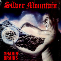 Silver Mountain : Shakin' Brains