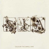 Sia: Colour the small one