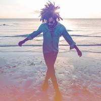 Kravitz, Lenny: Raise vibration
