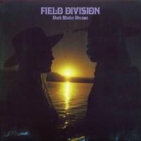 Field Division: Dark Matter Dreams
