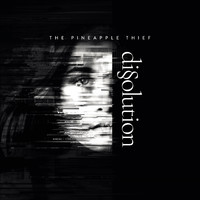 Pineapple Thief: Dissolution