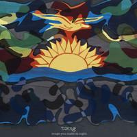 Tunng: Songs you make at night