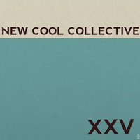 New Cool Collective: Xxv