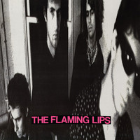 Flaming Lips: In a priest driven ambulance