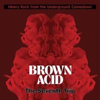 V/A: Brown Acid - Seventh Trip