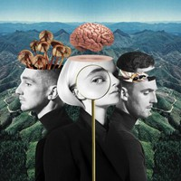 Clean Bandit: What is love