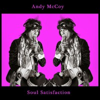 McCoy, Andy: Soul satisfaction