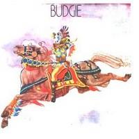 Budgie: Budgie