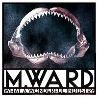 Ward, M.: What a wonderful industry (ltd clou