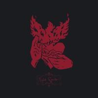 Crippled Black Phoenix: Night raider