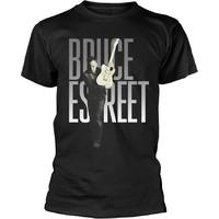 Springsteen, Bruce: E street