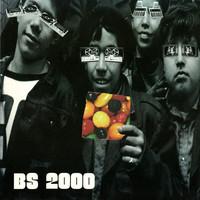 BS 2000: BS 2000