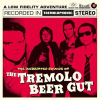 Tremolo Beer Gut: The inebriated sounds of the tremol