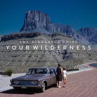Pineapple Thief: Your Wilderness