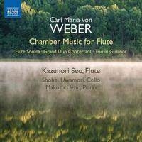 Seo, Kazunori: Chamber music for flute
