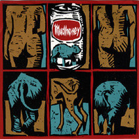 Mudhoney: You're Gone