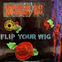 Husker Du: Flip Your Wig