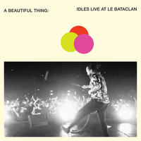 Idles: A Beautiful Thing: IDLES Live at Le Bataclan