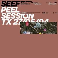Seefeel: Peel Session