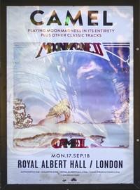 Camel : At the Royal Albert Hall