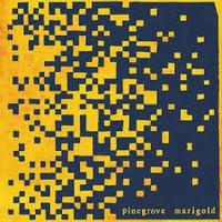 Pinegrove: Marigold