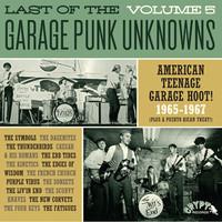V/A: Garage Punk Unknowns Volume 5