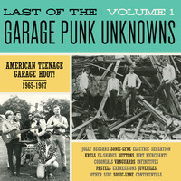 V/A: Last Of The Garage Punk Unknowns Volume 1