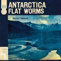 Flat Worms: Antarctica