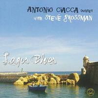 Grossman, steve: Lagos Blues