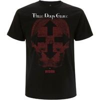 Three Days Grace: Skull