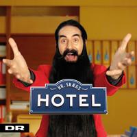 Hr. Skæg: Hr. skægs hotel