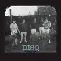 Disq: Collector