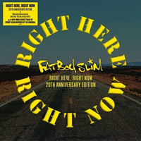 Fatboy Slim: Right Here Right Now