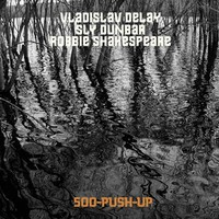 Vladislav Delay: 500-Push-Up