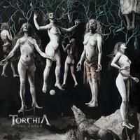 Torchia : The coven