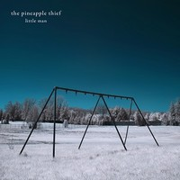 Pineapple Thief: Little man
