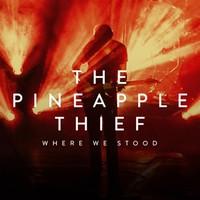 Pineapple Thief: Where We Stood