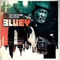 Bluey: Life Between the Notes