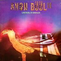 Amon Duul II: Carnival In Babylon