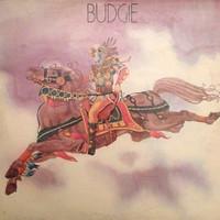 Budgie : Budgie