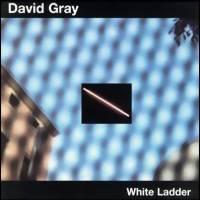 Gray, David: White ladder