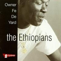 Ethiopians: Owner Fe De Yard