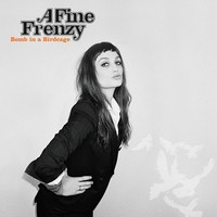 A Fine Frenzy: Bomb in a birdcage