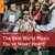 V/A : Rough guide to the best world music you've never heard - CD