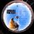 Pink Floyd : Animals - Käytetty LP