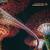 Panzerpappa : Summarisk Suite - CD